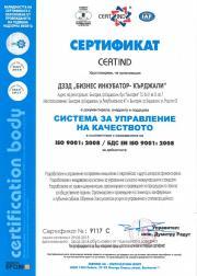 BI_Certificate_BG_0